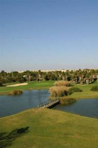 Water hazards provide a challenge to golfers of all levels