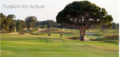 Melia Golf is the third of four courses within 15 minutes of Casa Alhambra